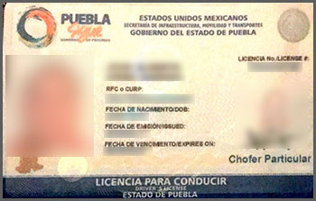 Licencia Manejo - Mexico - Toronto