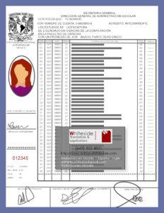 Transcript de calificaciones o notas